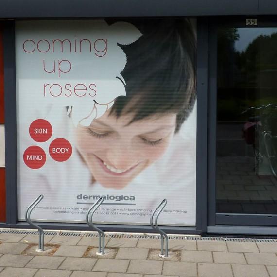 Signz-Belettering-Coming-up-roses-Raamdecoratie-001